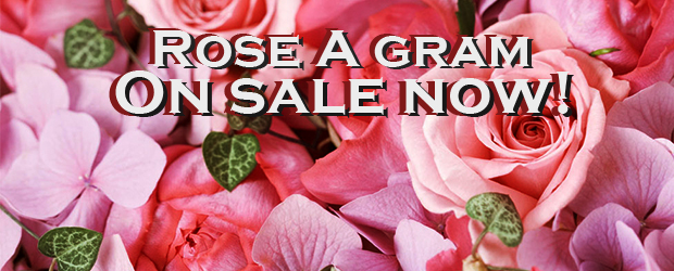 Buy your sweetie a single rose ($3.50 each)….or buy a bunch! Includes a beautiful bouquet, card and personal delivery. Available in North and South foyers.